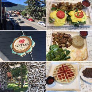 Lotus Cafe Jackson